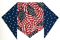4th of July bandana